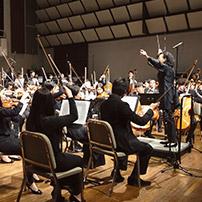 hkapa_orchestra